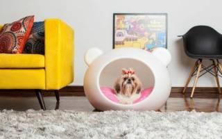Лежак для собак своими руками: фото и видео для начинающих мастеров