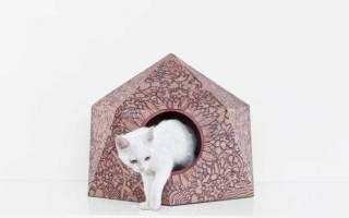 Кошачий домик своими руками: фото и видео мастер класс