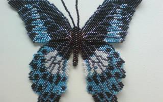 Схема плетения бабочки из бисера: мастер класс своими руками