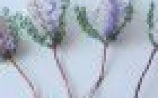 Мастер класс по вереску из бисера: схема и видео-подборка в конце статьи