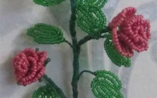 Розы из бисера: мастер-класс ажурных, кружевных и уральских роз с видео и схемами